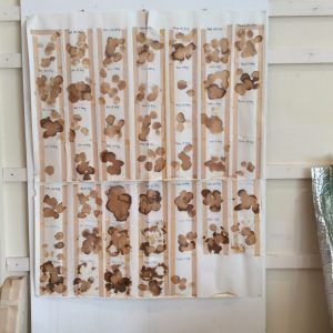 Tea stains on muslin, applied to paper with double sided adhesive tape